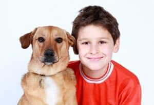 גידול כלבים וילדים